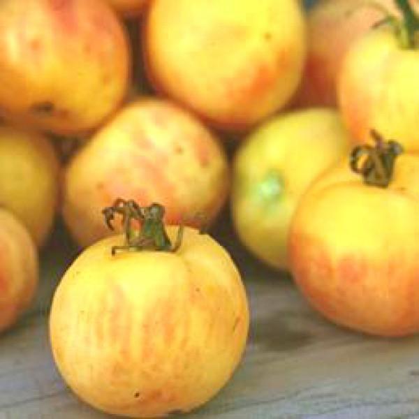 Garden Peach Tomaten Samen