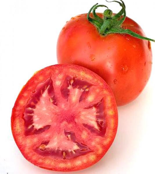 Floradade Tomaten Samen
