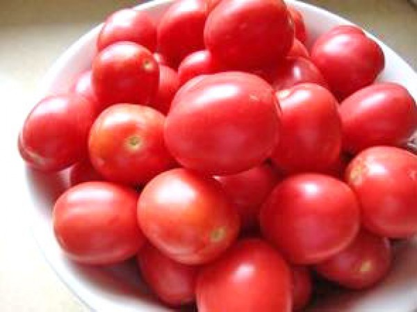 Porter Tomaten Samen