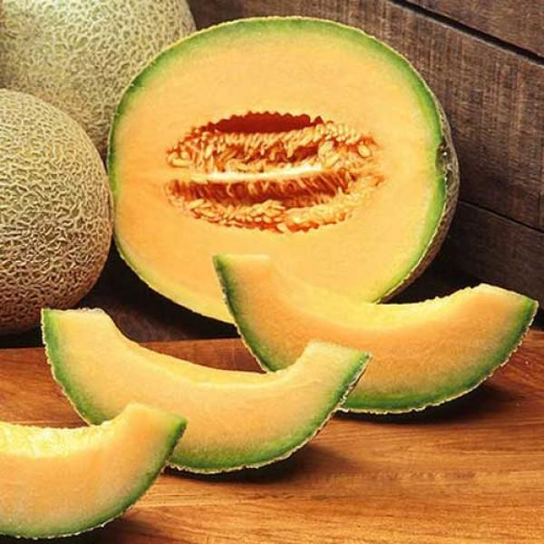 Melone Cantaloupe Hearts of Gold Samen B-Ware