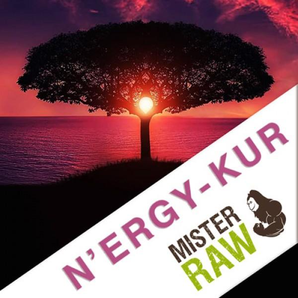 N`ERGY-Kur von Mr. Raw - Anleitung